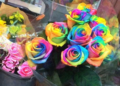 Very colourful roses!