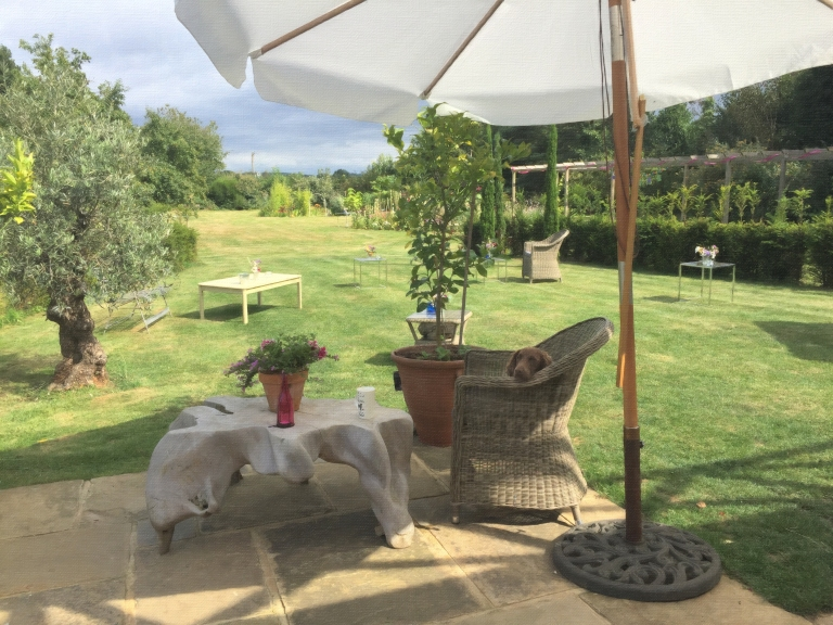 Early prep of the garden with Molly the dog wondering what all the fuss was about